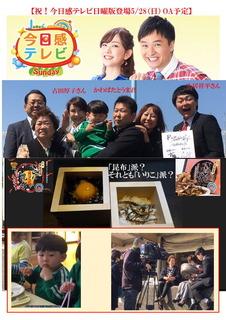 0528-今日感テレビ-予告.jpg