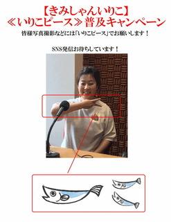 いりこピース普及キャンペーン.jpg